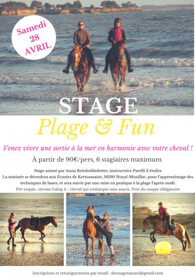 Stage plage